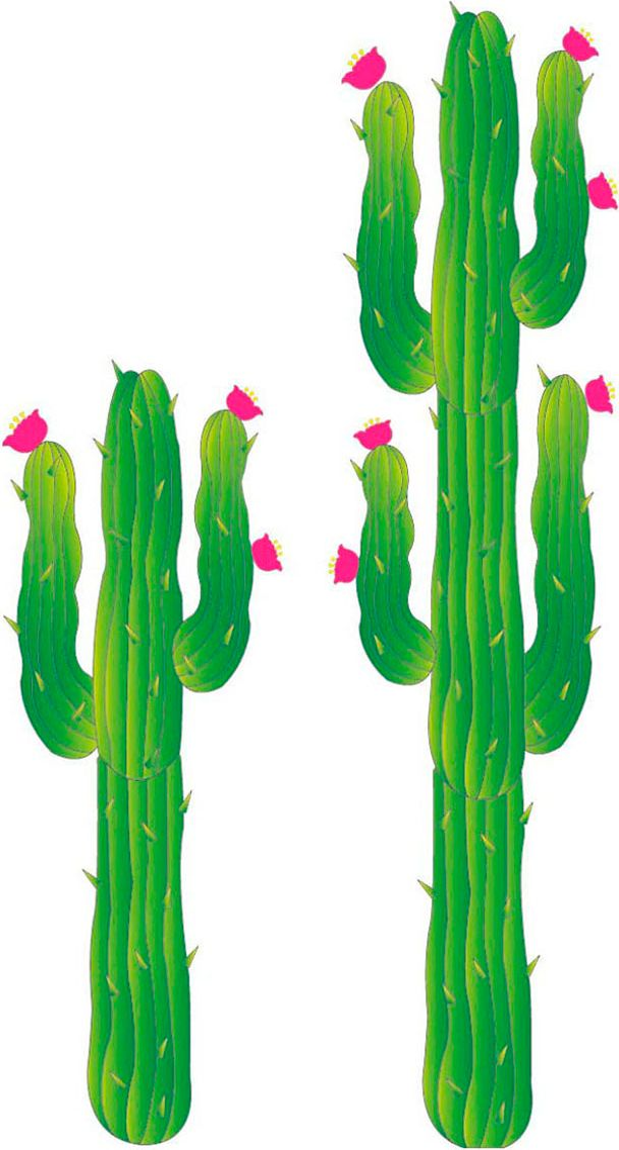 2 papieren cactussen