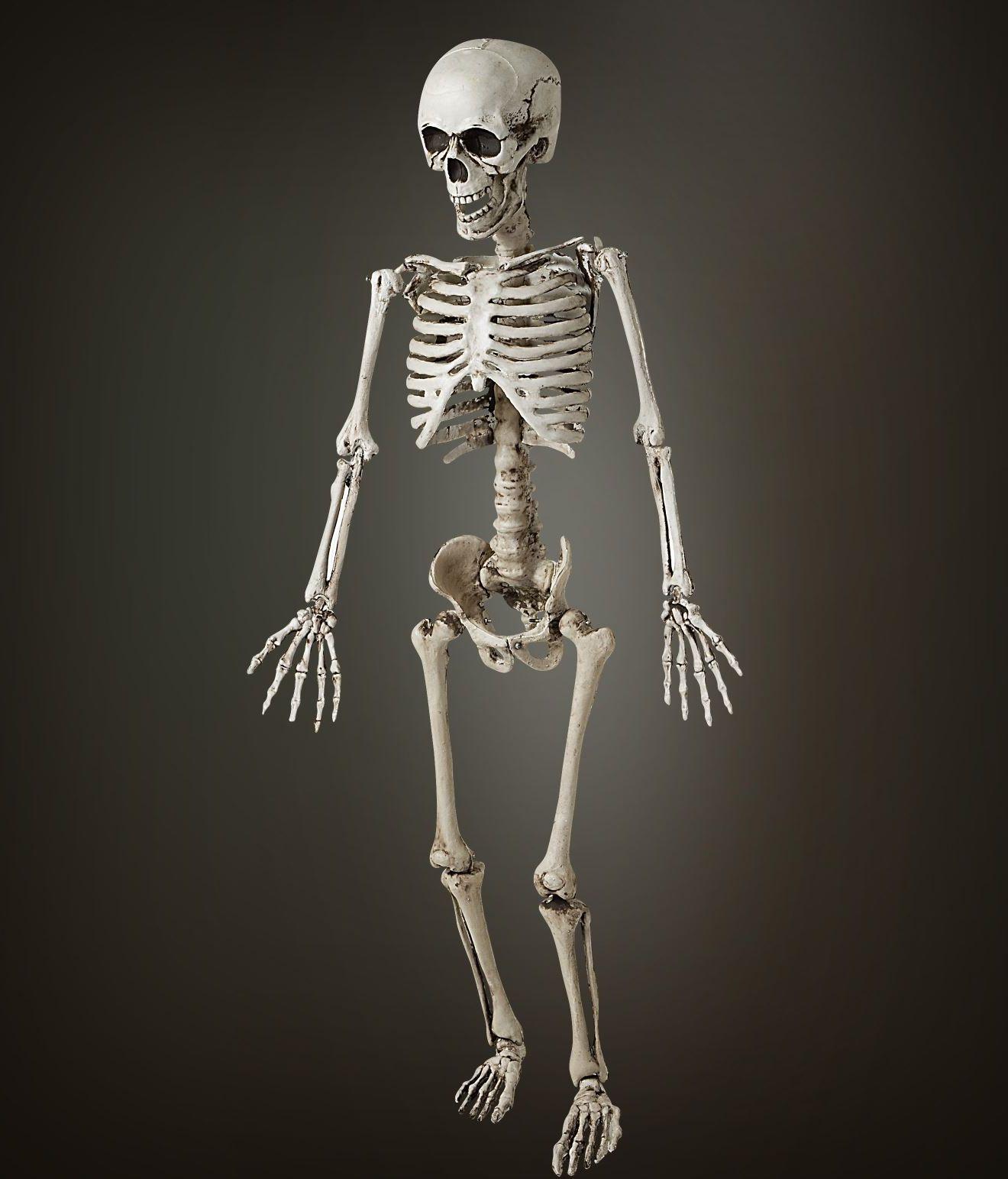 Beweegbare skelet