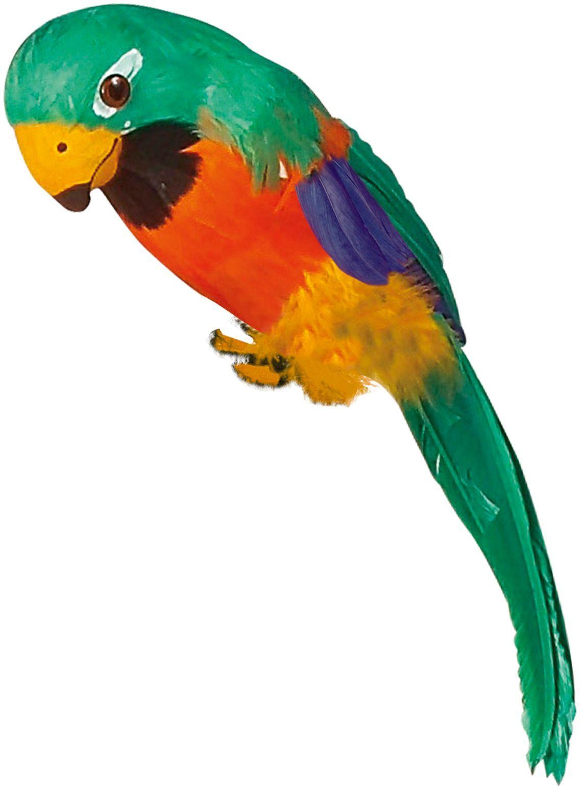 Groene papegaai met veren