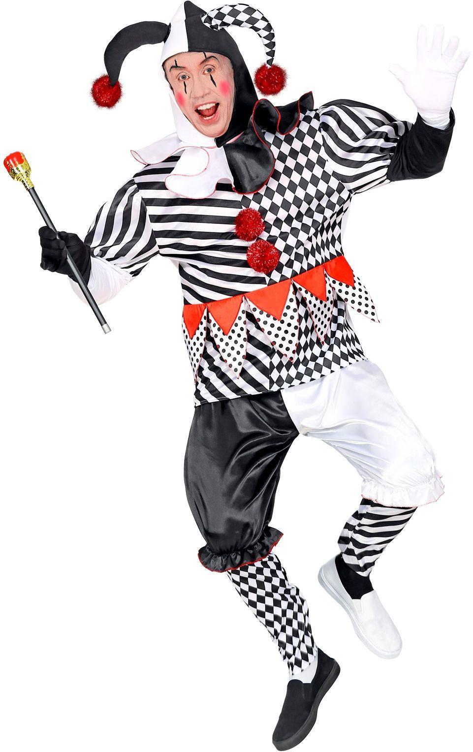 Harlekijn carnaval kostuum