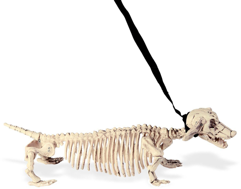 Honden skelet met riem