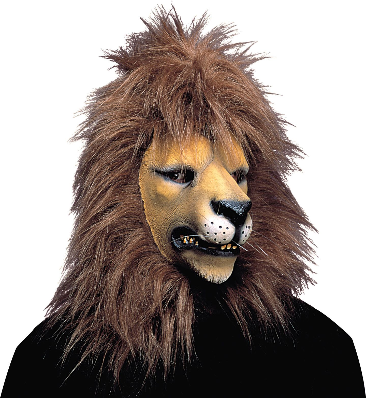 Leeuwen masker