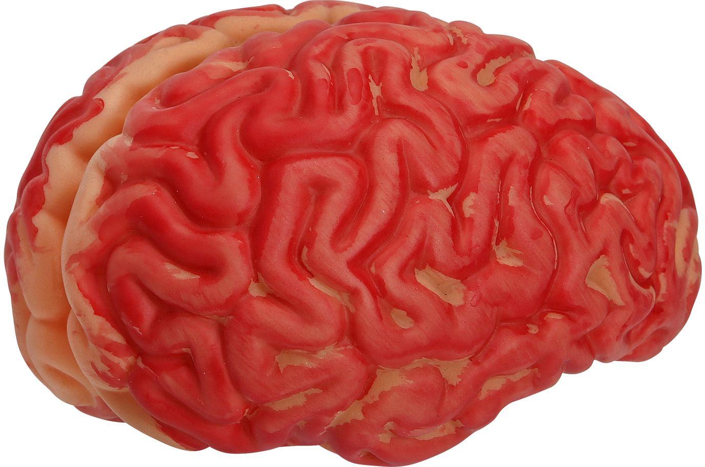 Mensen hersens rood halloween