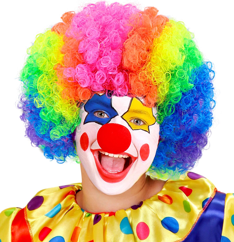 Multikleurige clownspruik