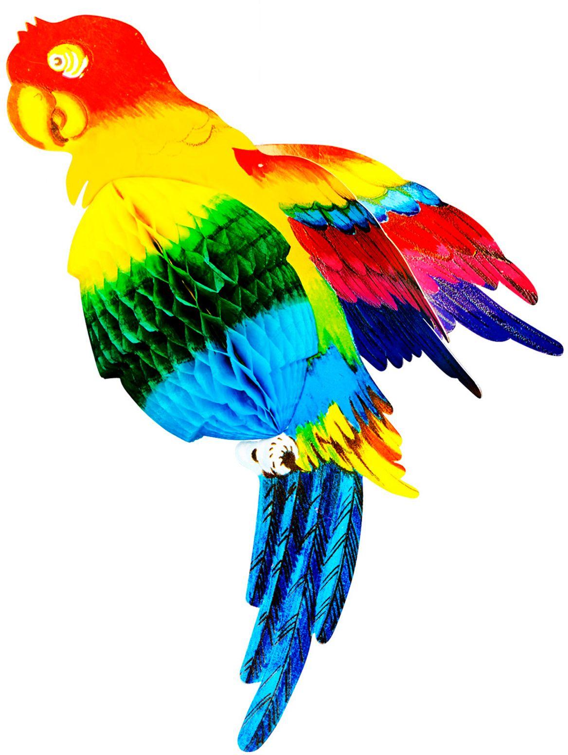 Multikleurige papegaai honingraat
