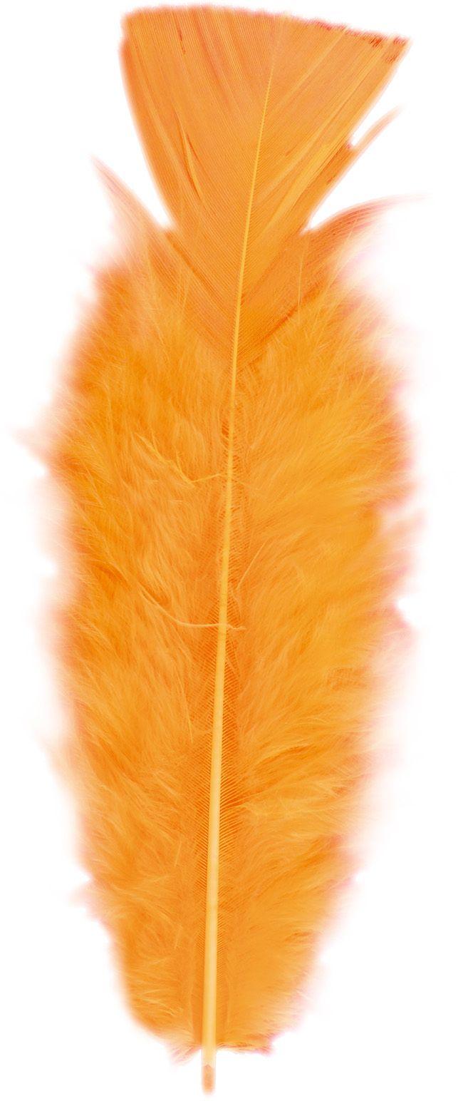 Oranje veren 50 stuks