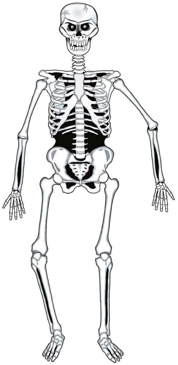 Papieren skelet versiering