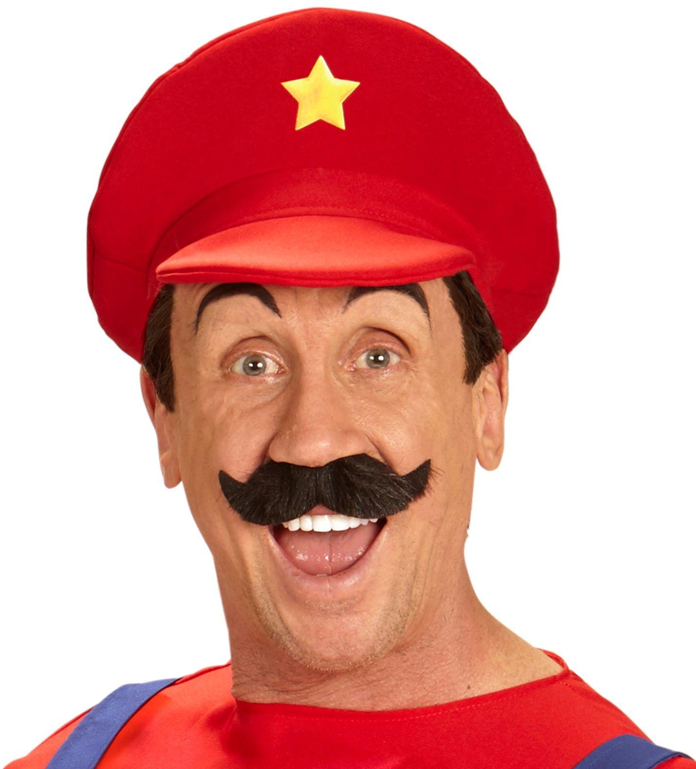 Super Mario pet