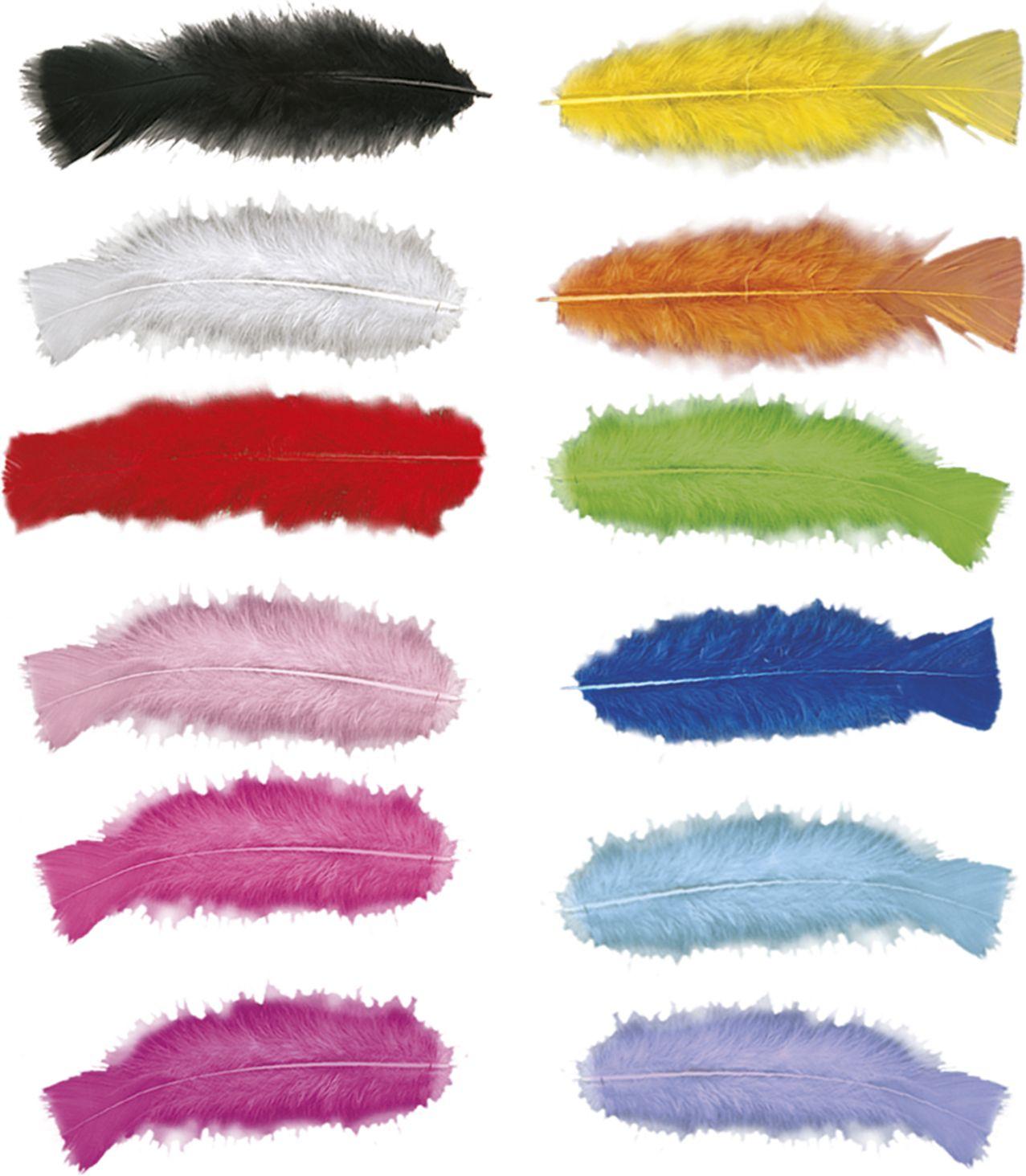 Verschillende kleuren veren 50 stuks
