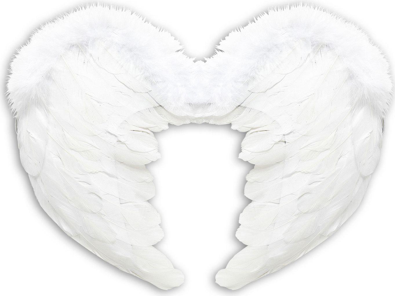 Witte engel vleugel